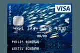 ICS Visa Foto Card