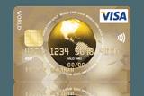 ICS Visa Gold Card